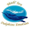 Madi'Sea Dauphins-Emotion